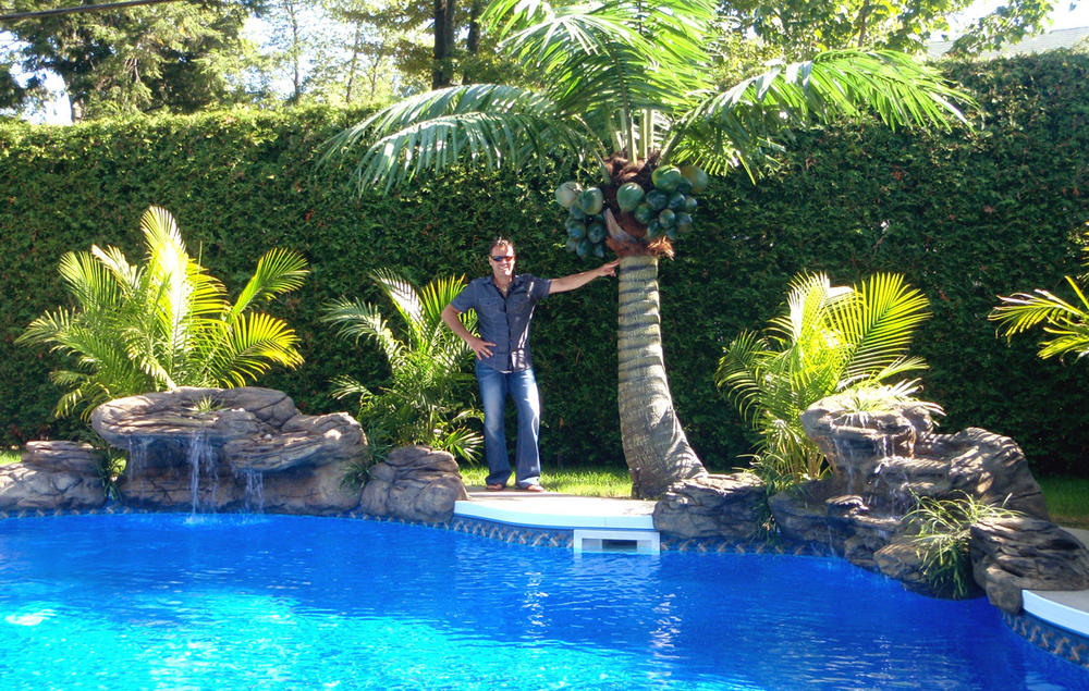 Combo pool waterfall and palm tree